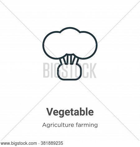 Vegetable icon isolated on white background from farming collection. Vegetable icon trendy and moder