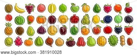 Vector Set Of Fresh Fruits, Group Of Cut Out Cartoon Fruits And Berries, Various Minimal Design Frui