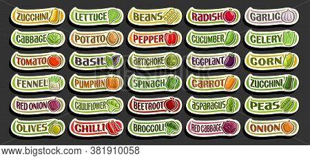 Vector Set Of Fresh Vegetables, Group Of Cut Out Cartoon Vegs, Various Minimal Design Vegetable Stic