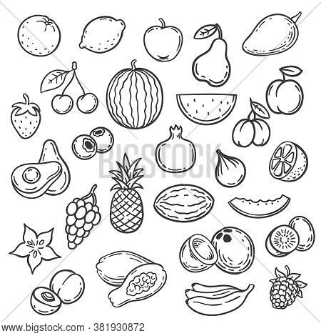 Doodle Fruits. Hand Drawn Outline Berry Apricot, Banana And Pear, Cherry. Apple, Strawberry And Grap