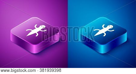 Isometric Lizard Icon Isolated On Blue And Purple Background. Square Button. Vector