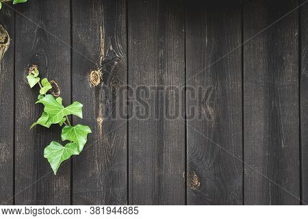 Wood Table Kitchen. Timber Plank Surface Wall For Vintage Grunge Wallpaper. Old Floor Wooden Pattern