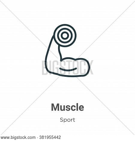 Muscle icon isolated on white background from sport collection. Muscle icon trendy and modern Muscle