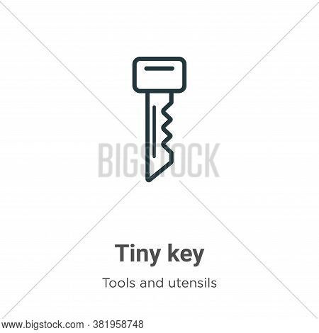 Tiny key icon isolated on white background from tools and utensils collection. Tiny key icon trendy