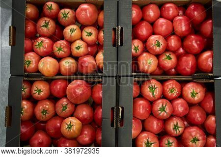 Sorted Red Tomatoes In A Hypermarket Warehouse
