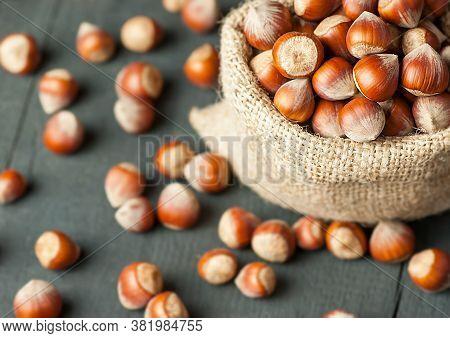 Hazelnuts, Filbert In Burlap Sack On Rustic Wooden Table. Heap Or Stack Of Hazel Nuts. Hazelnut Back