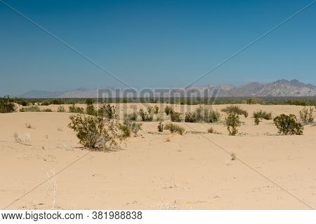 Overview Of The Desert Imperial Sand Dunes On A Cloudless Spring Day With Blue Sky, Overlooking The