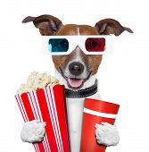 3d glasses movie popcorn dog watching a film poster