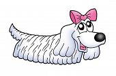 Small dog with pink ribbon - color illustration. poster