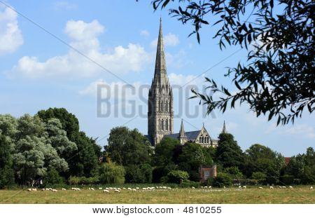 Salisbury Cathrdral