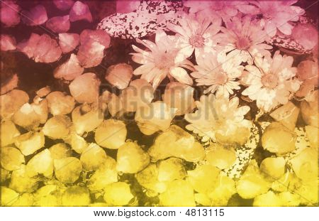 Innocence in Nature Painted Flowers Art Abstract poster