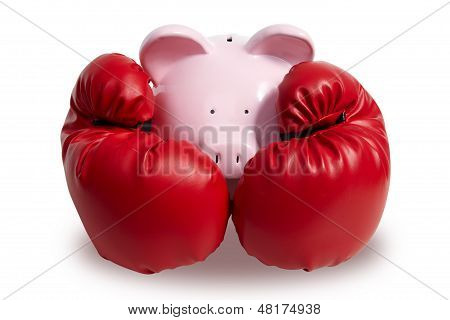 Pig and boxing-glove on a white background poster