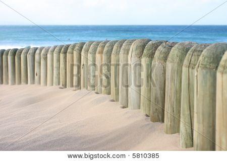 Beach Dune And Beach Fence