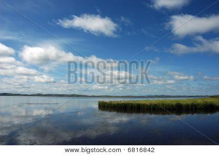 Flower Lake