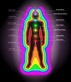 Vector Illustration of Human Auras and Chakras Eps10 Vector Ai Eps and Jpg Included poster