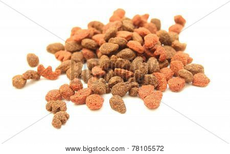 cat food close-up isolated on white background