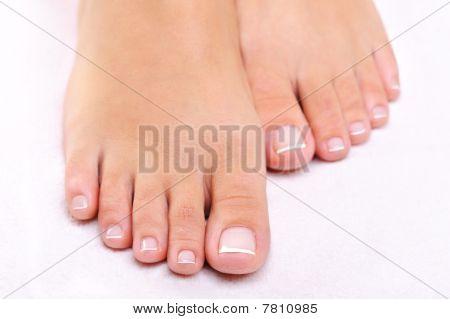 Beauty Female Feet