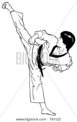 High, Perfect Side Kick (Taekwondo)
