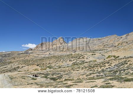 Rocky Mountain Among Scant Vegetation