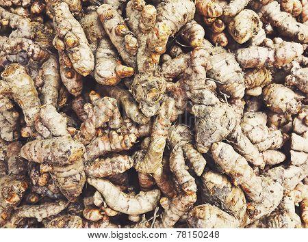 Ginger Pile