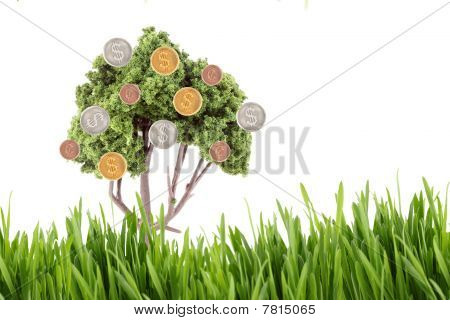 small miniature tree growing copper cents with silver and gold dollar coins isolated on a white background with grass foreground poster