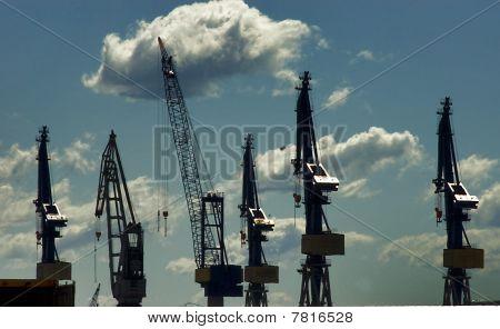 Docking Cranes At Harbor