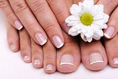 Beautiful well-groomed female toes with flowers. Beauty french manicure poster