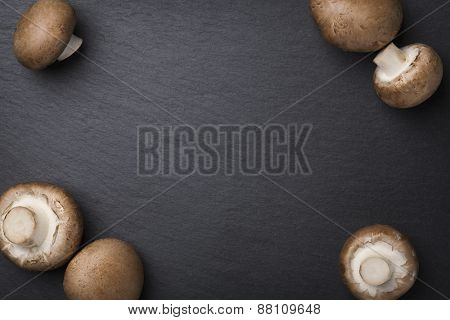 Several champignon mushrooms isolated on dark grey slate stone background with empty copy space.