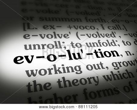 Dictionary Evolution