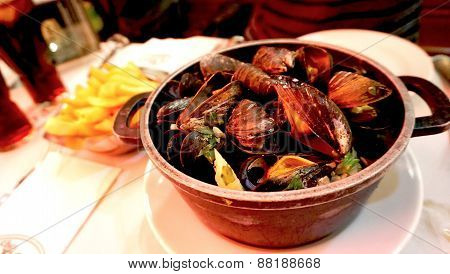 Baked Mussels With White Wine With Frenchfried In Belgium
