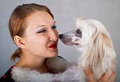 The beautiful girl and chinese crested dog on grey background. Shallow DOF focus on girl poster