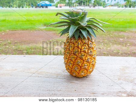 Ripe Pineapple