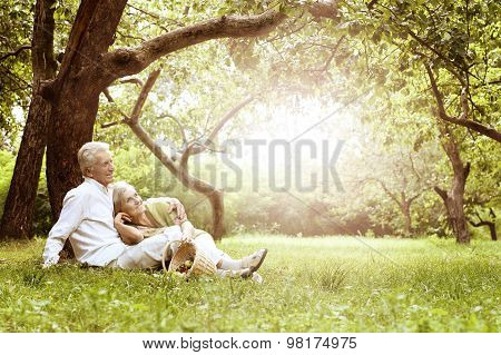 Portrait of Amusing old couple on picnic poster