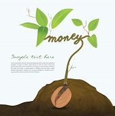 Creative seed idea abstract info graphic, concept image of small plant sprout, Vector illustration,Money Concept. poster