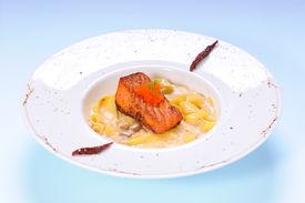 Fettuccine mushroom cream sauce with grilled salmon