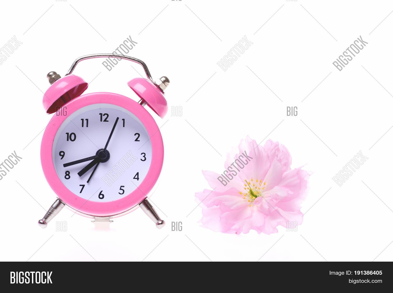 28c670f3978a61 Pink Retro Alarm Clock And Small Light Pink Sakura Flower