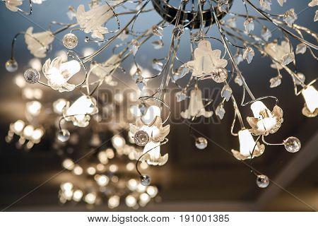 Chandelier ceiling carob led. Intererniy light indoor. Lamp for large spaces.