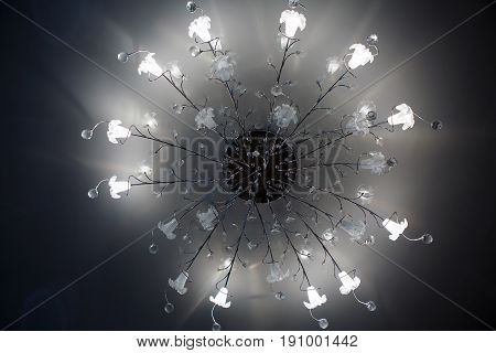 Chandelier ceiling with a globe light. Intererniy light indoor. Lamp for large spaces.
