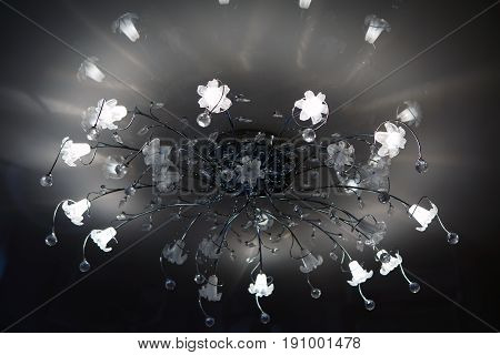 Chandelier ceiling carob led. Interior light indoor. Lamp for large spaces.