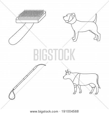 Dog, cow, cattle, pet .Vet Clinic set collection icons in outline style vector symbol stock illustration .