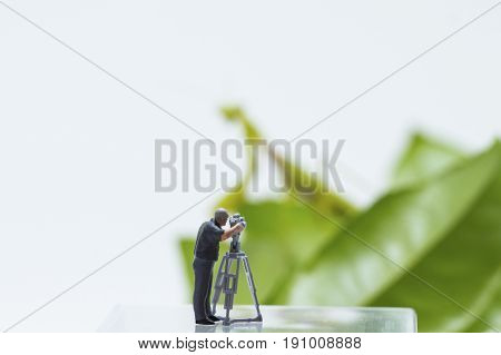 Tiny figurine of cameraman filming green leaves and mantis on background. Mantis silhouette on green leaf. Little cameraman film exotic animal. Dangerous profession funny scene. Tiny people macrophoto