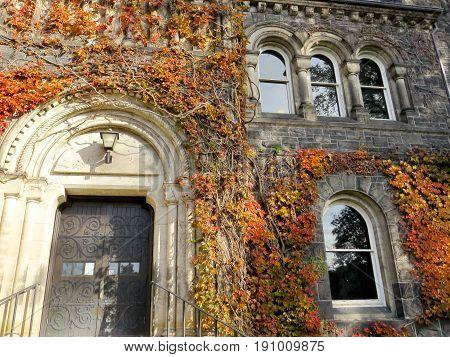 Toronto, Canada - November 18, 2016: Windows of Gerstein Science Information Centre at the University of Toronto.