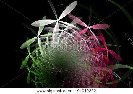 Fractal flag tricolor of colorful daisy chamomiles