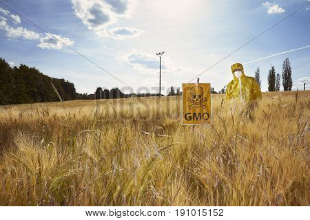 Activist in protective suit protesting on field with genetically modified cereals poster
