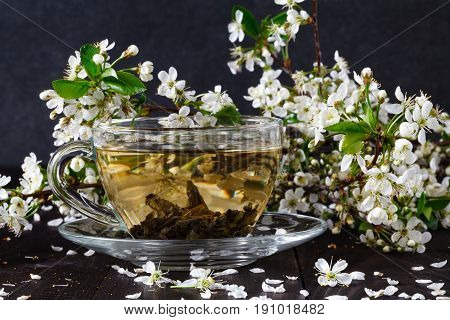 tea with apricot flowers and branches on dark table