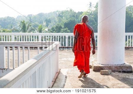 Buddhist in buddha temple, buddhism religion