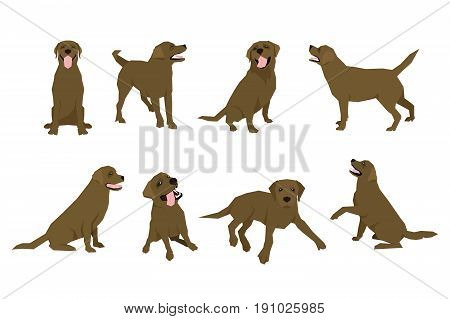 Animal dog Labrador character icon set in flat style. Design template. EPS10 illustration.