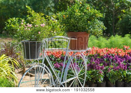 Model Of Bicycle Equipped With Basket Of Flowers In The Garden