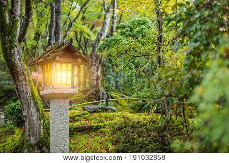 Japanese Style Garden With Stone Lantern In Autumn Season, Wet Moss Rain Forest Garden In Japan.