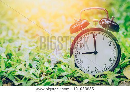 9 O'clock Retro Clock In The Garden Grass Field With Sun Light.